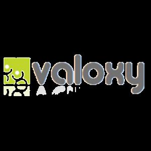 Valoxy-450x450