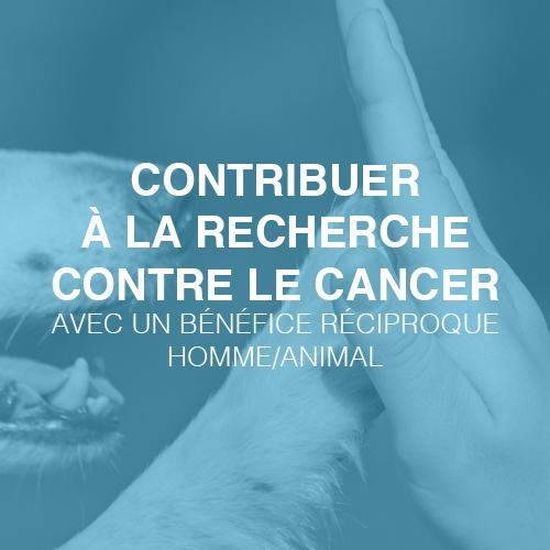 contribuer à la recherche contre le cancer